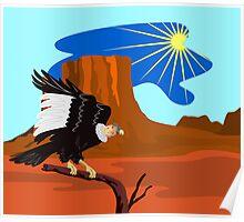 Vulture Buzzard Bird Poster