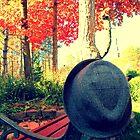 Oxford, MI   Autumn 9 by RJtheCunning