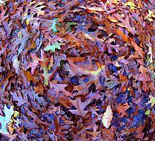 Oxford, MI | Autumn 15 by RJtheCunning