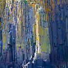 I'm lichen the vibrance by scullyb