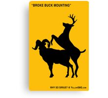 Broke Buck Mounting Canvas Print