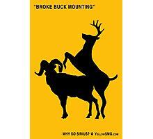 Broke Buck Mounting Photographic Print