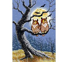 Hooty Who's There? Photographic Print
