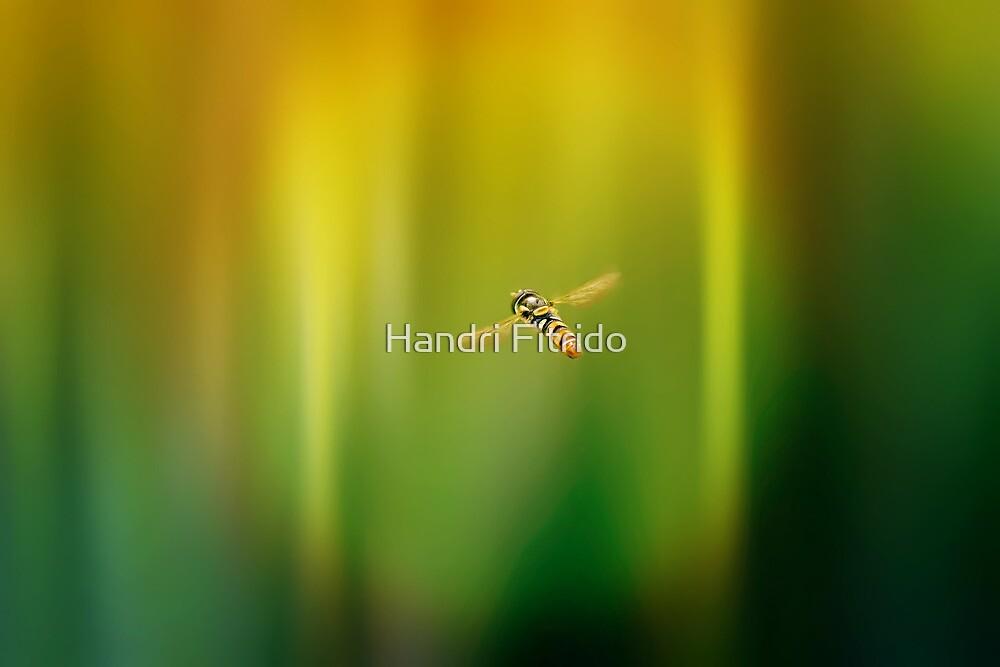 Enter the secret of light by Handri Fitrido