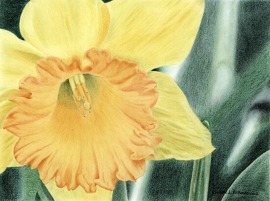 Daffodil Dayz by Jennie L. Richards