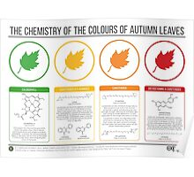 Autumn Leaves Chemistry Poster