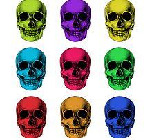 Skulls by Squidy