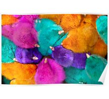 Colorful Chicks  Poster