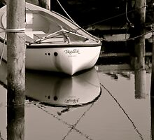 Safe Harbor by Odd-Jeppesen
