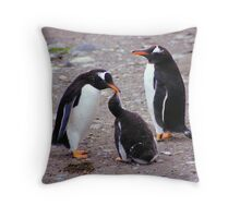 Gentoo Penguin Family Feeding Chick Throw Pillow