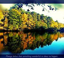 Reflections by KatarinaD