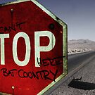 This is bat country - Fear and loathing in Las Vegas by Nicklas81