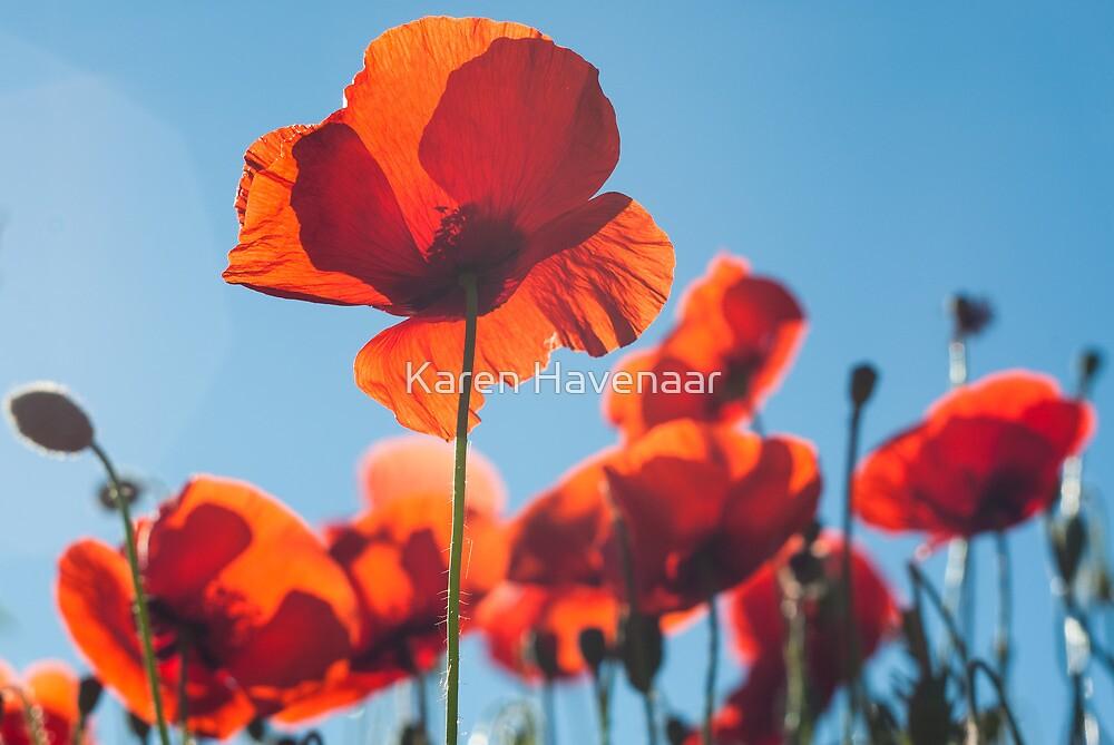 Simply Red by Karen Havenaar