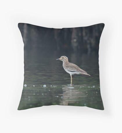Senegal Thick-knee Throw Pillow