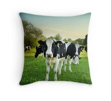 Cow lomo No.5 Throw Pillow