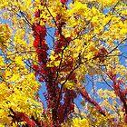Supernatural Trees 2 by SRowe Art
