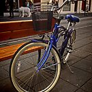 Classic blue Schwinn bike by Sven Brogren