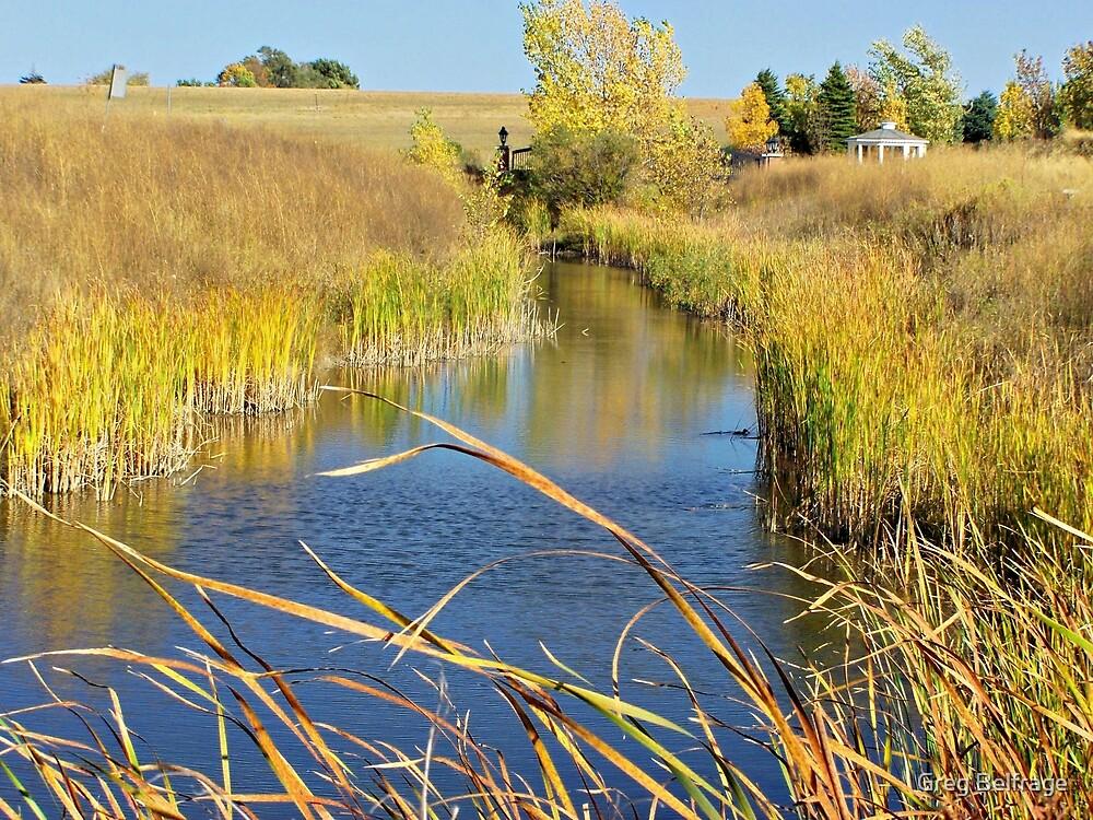 Prairie Creek by Greg Belfrage