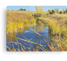 Prairie Creek Metal Print