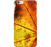 Letter Dropt From God? iPhone Case/Skin