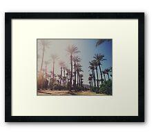 Wide Awake Framed Print