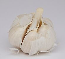 Garlic by Carolyn Clark