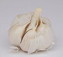 Garlic by Carolyn Clark
