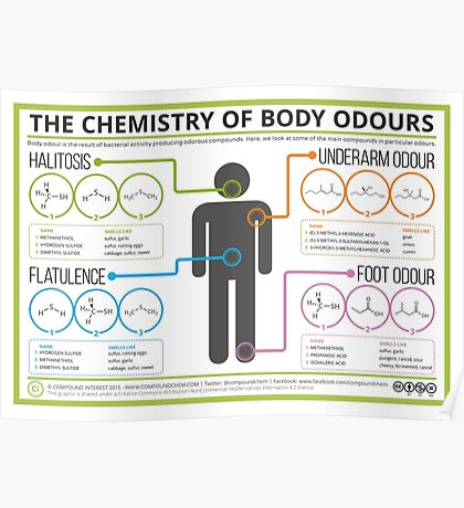 The Chemistry of Body Odours Poster