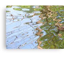 Duck enters Psychotropica Canvas Print