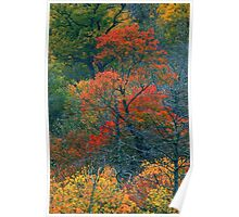 AUTUMN TREES BELOW THE CHIMNEYS Poster