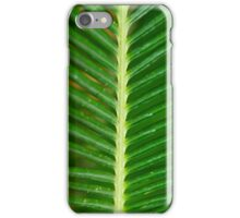 Beauty No.4 iPhone Case/Skin
