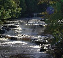 Aysgarth Falls by tom1502