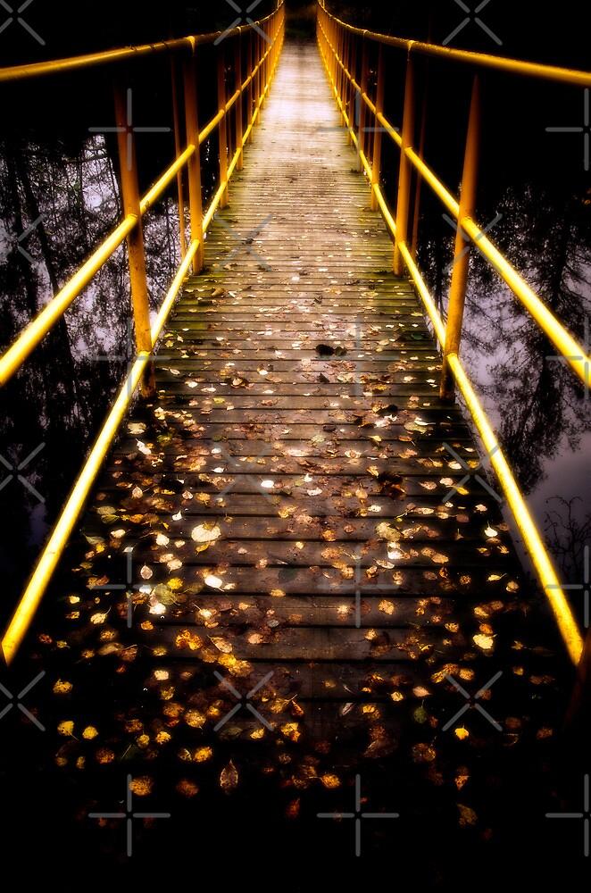Take the bridge! by marina63