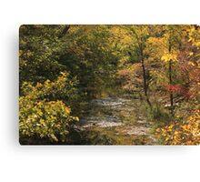 Kansas Flint Hill's Stream in the Fall Canvas Print