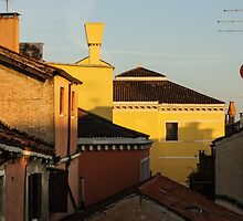 Venice, Italy - Fabulous Rooftops and Chimneys by Georgia Mizuleva