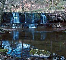 Nidd Falls by WatscapePhoto