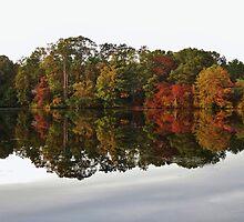 Lake Kaleidoscope by RVogler