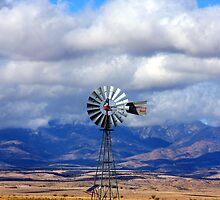 The Great Western Windmill by ANDREW ROMER