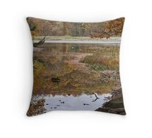 Down the Lazy Stream Throw Pillow