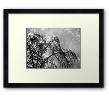 Willow Tree Against the Sky, Black and White Framed Print