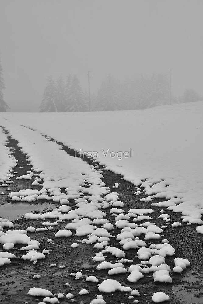 2012 - first snow by moyo