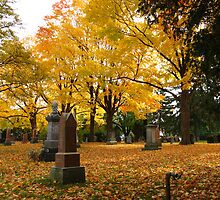 Historic Thornhill Community Cemetary by MarianBendeth