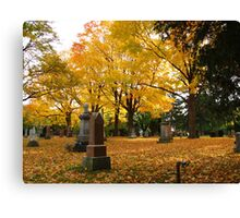Historic Thornhill Community Cemetary Canvas Print