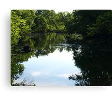 Oxbow Slough Canvas Print