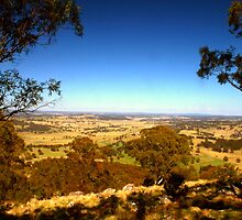 The view from Mt Rumbee by Michael Matthews