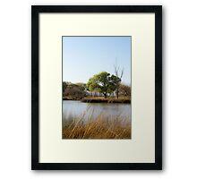 Calm Beaver Pond Framed Print