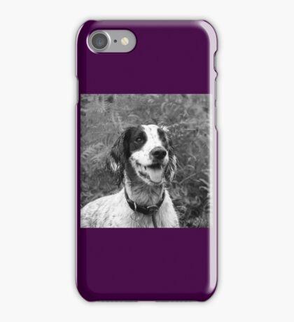 Dog portrait, spaniel in bracken iPhone Case/Skin
