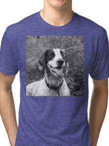 Dog portrait, spaniel in bracken Tri-blend T-Shirt