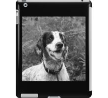 Dog portrait, spaniel in bracken iPad Case/Skin