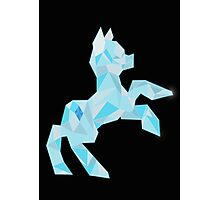 Crystal Pony (maybe Diamond I dunno) Photographic Print